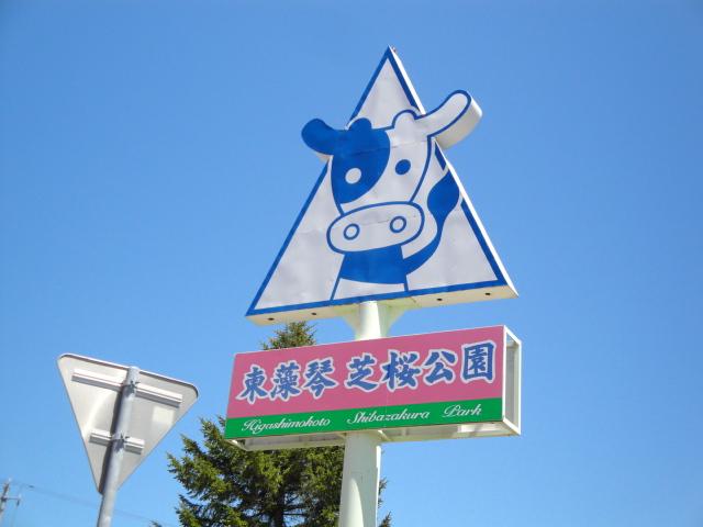 芝桜公園1