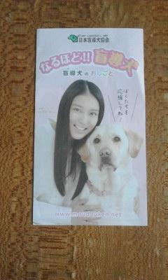 盲導犬キャンペーン20130928