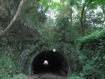 佐白山のトンネル