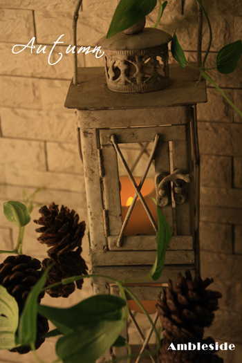 IMG_6570-Candlecorn.jpg