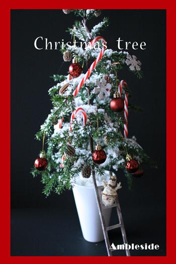 IMG_7576-Christmas-Tree.jpg