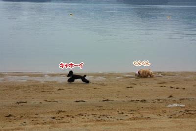 004_20131106205956ec5.jpg