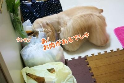 004_20131107220841c15.jpg