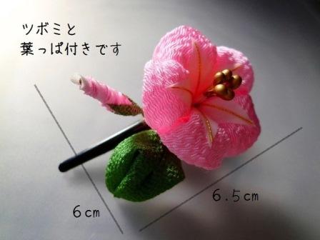 0010140212-pink.jpg