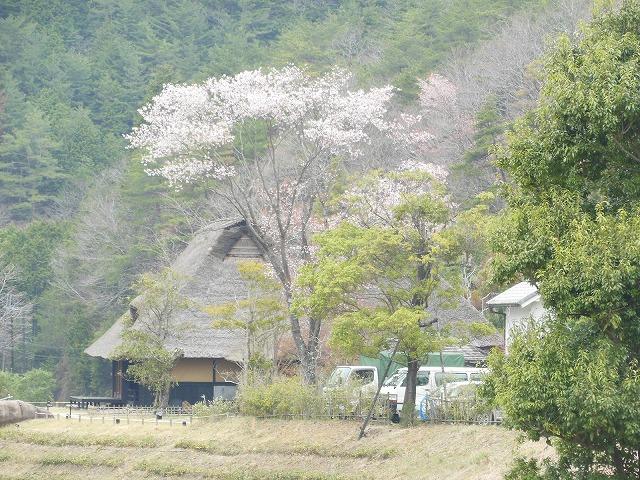 farm house-miho