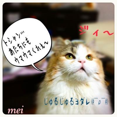 IMG_0982_convert_20130901194551.jpg