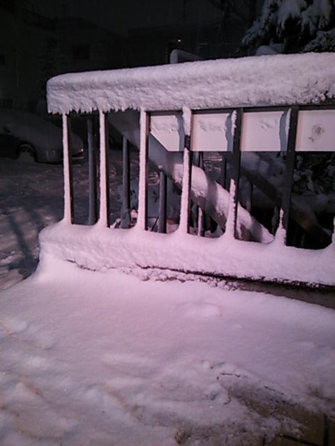 大雪でした。。