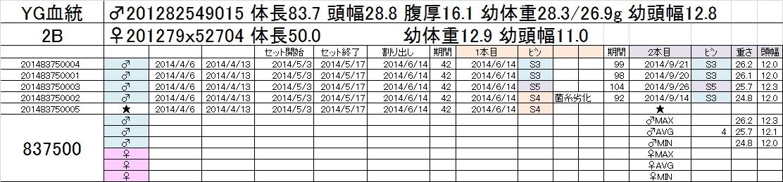 2014-15 2本目交換 2A