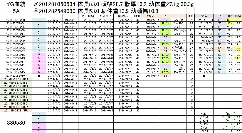 2014-15 2本目交換 5A