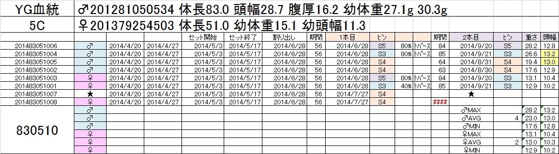 2014-15 2本目交換 5C