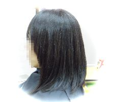 IMGP3632-1.jpg
