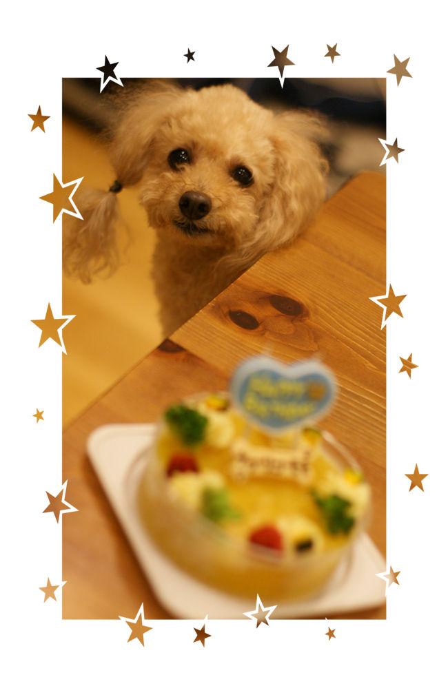 DSC05774-cake.jpg