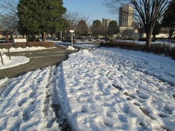 20140209降雪 (29) 圧縮