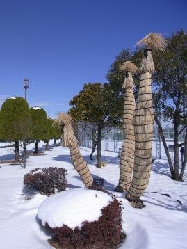 20140209積雪 (19)圧縮