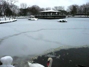 20140215降雪状況 (5) 圧縮
