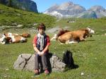 エッシネン湖と牛