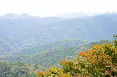高尾山 006