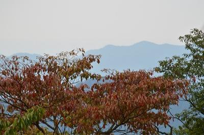 高尾山 015