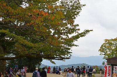 高尾山 017