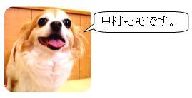 nakamuramono.jpg