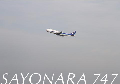 747_1.jpg