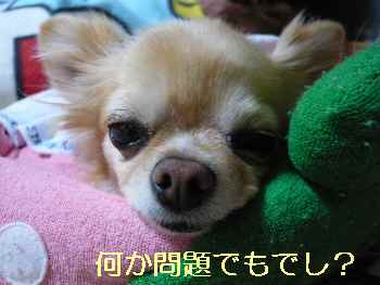 blog2013052803.jpg