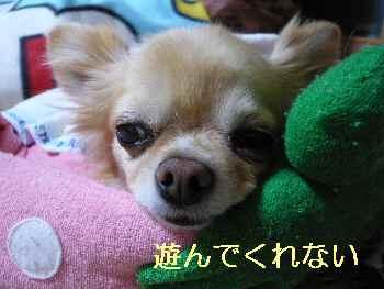 blog2013053102.jpg