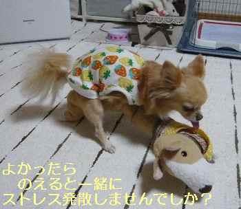 blog2013060105.jpg
