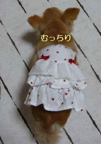 blog2013060304.jpg