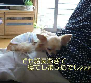 blog2013060502.jpg
