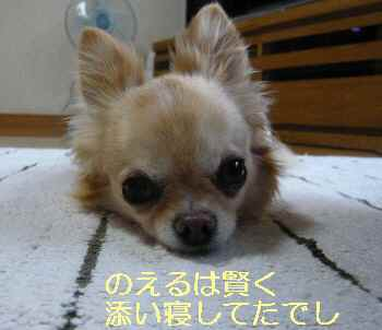 blog2013060703.jpg