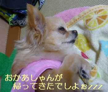 blog2013060903.jpg