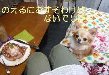 blog2013061305.jpg