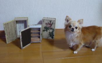 blog2013061501.jpg
