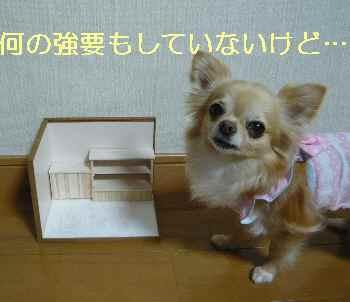 blog2013062802.jpg