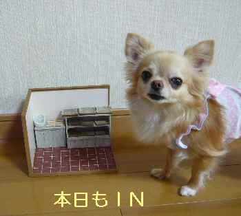 blog2013062903.jpg