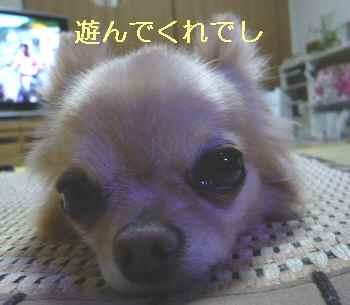 blog2013070802.jpg