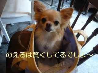 blog2013071103.jpg