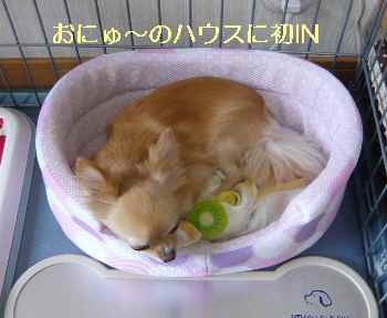 blog2013071203.jpg