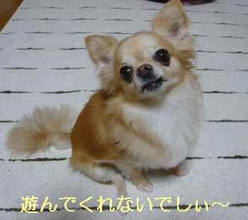 blog2013071505.jpg
