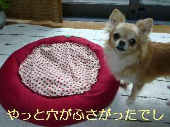 blog2013071601.jpg