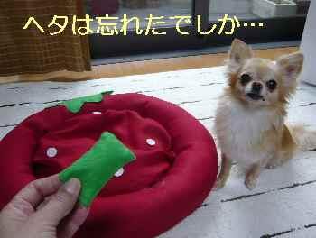 blog2013071602.jpg