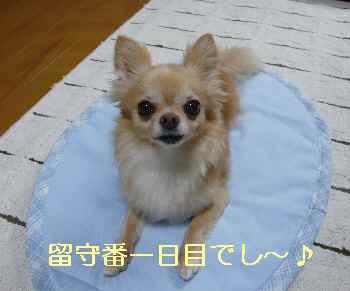 blog2013071701.jpg