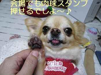 blog2013072004.jpg