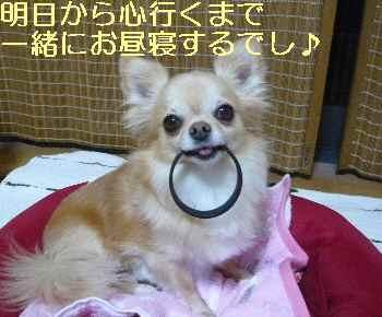 blog2013072201.jpg