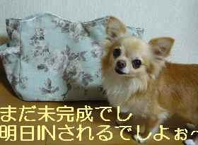 blog2013072806.jpg