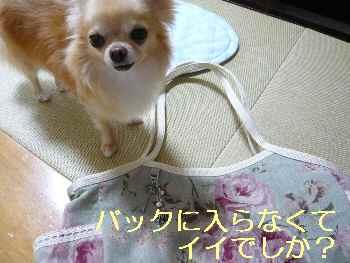 blog2013072905.jpg