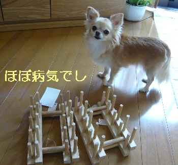 blog2013080501.jpg