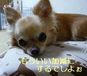 blog2013080606.jpg