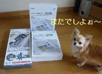 blog2013080901.jpg